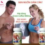 Green Coffee –  Phương pháp giảm cân hiệu quả đến từ Mỹ